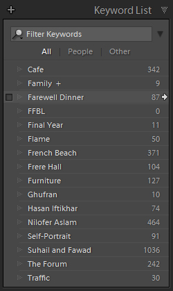 keywords in lightroom