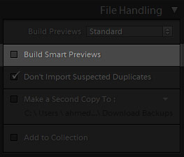 build smart previews in lightroom