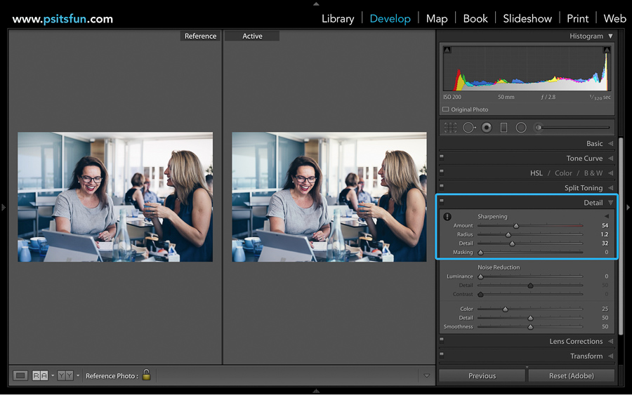 using reference view in lightroom