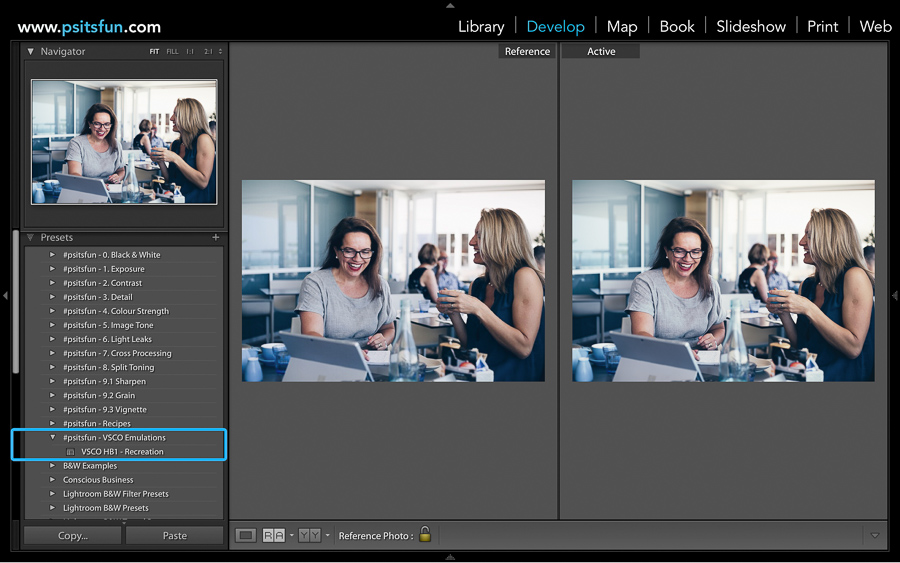 Recreating Styles using Reference View in Lightroom