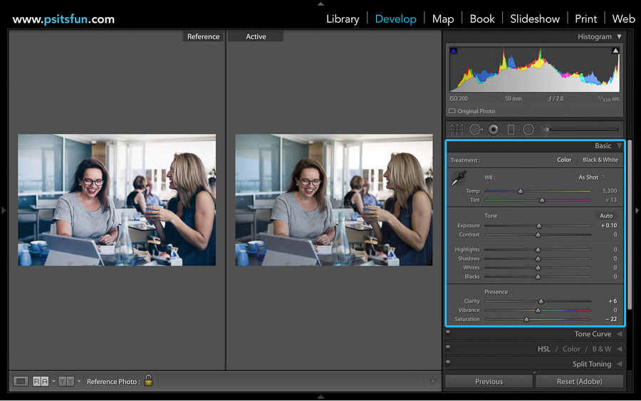 reference view in lightroom