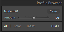 Lightroom Classic 7.3 - Profile Amount