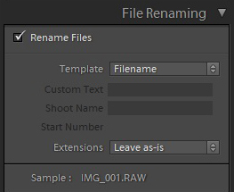 filename templates in Lightroom