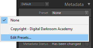 metadata panel in lightroom