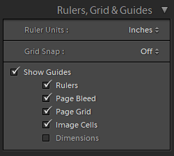 rulers grid and guides panel