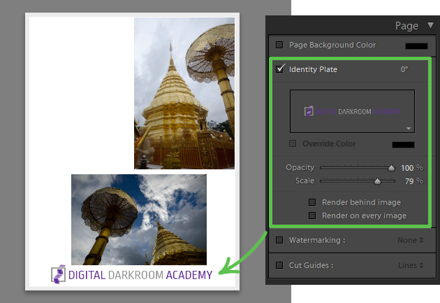 using Page panel to watermark photo collage in lightroom